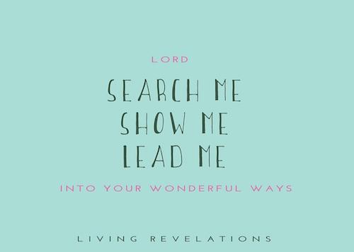 Search me, show me, lead me